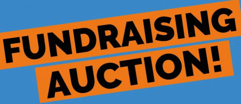 fundraising auction web